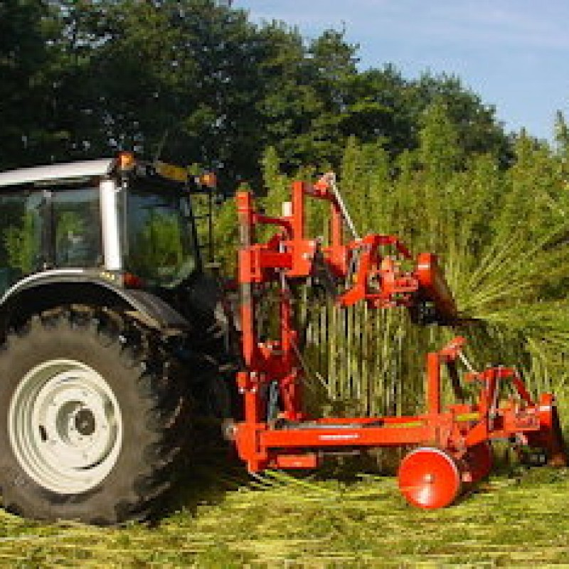 Let's Ease Up on Restrictions for Kentucky Hemp Production!