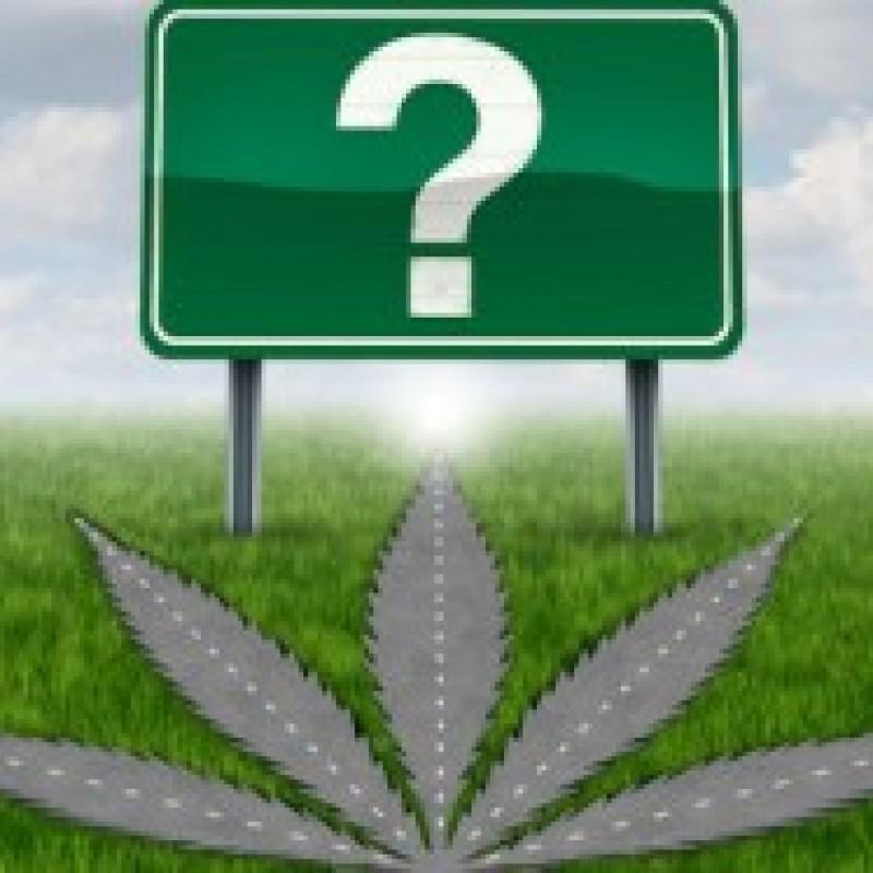 Who Will Take The Medical Marijuana Challenge?