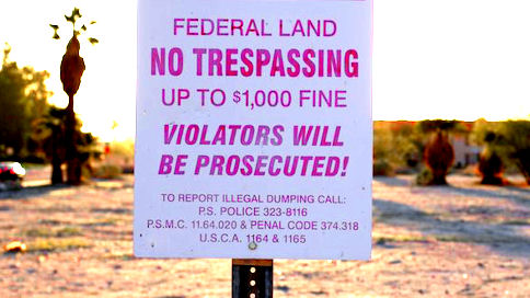 The Cliven Bundy Issue: Who Should Be In Charge of Public Land?