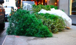 U.S. Government Gets Into A Wasteful Christmas Mood, Says Paul In Latest Waste Report