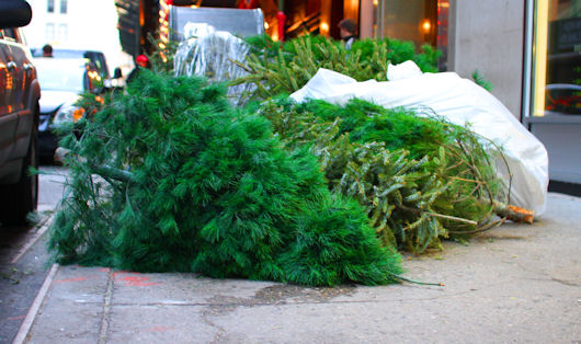 Latest Waste Report: U.S. Government Gets Into A Wasteful Christmas Mood